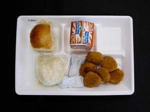 Primary view of object titled 'Student Lunch Tray: 01_20110401_01B6071'.