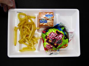 Primary view of object titled 'Student Lunch Tray: 02_20110411_02A5917'.