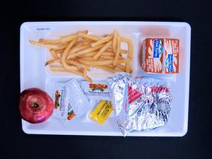Primary view of object titled 'Student Lunch Tray: 02_20110411_02A6122'.