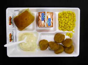 Primary view of object titled 'Student Lunch Tray: 02_20110411_02B5857'.