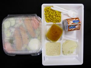 Primary view of object titled 'Student Lunch Tray: 02_20110411_02B5861'.