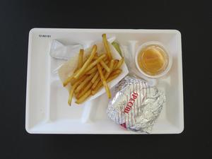 Primary view of object titled 'Student Lunch Tray: 01_20110413_01A6181'.