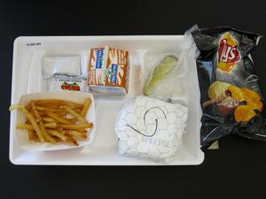 Primary view of object titled 'Student Lunch Tray: 01_20110413_01A6184'.