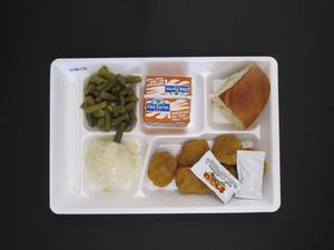 Primary view of object titled 'Student Lunch Tray: 01_20110413_01B6133'.