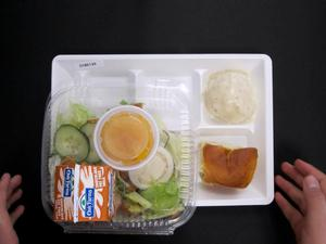 Primary view of object titled 'Student Lunch Tray: 01_20110413_01B6134'.