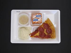 Primary view of object titled 'Student Lunch Tray: 01_20110413_01B6136'.