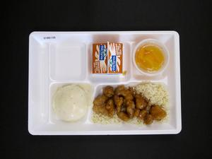 Primary view of object titled 'Student Lunch Tray: 01_20110413_01B6139'.