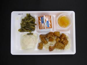 Primary view of object titled 'Student Lunch Tray: 01_20110413_01B6140'.