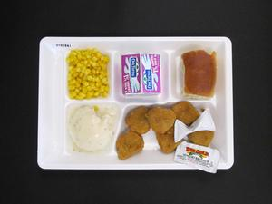 Primary view of object titled 'Student Lunch Tray: 01_20110413_01B6141'.