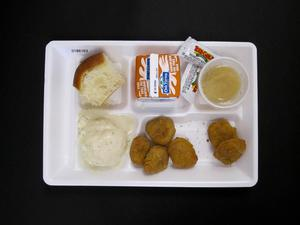 Primary view of object titled 'Student Lunch Tray: 01_20110413_01B6163'.