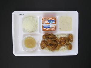 Primary view of object titled 'Student Lunch Tray: 01_20110413_01B6177'.