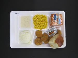 Primary view of object titled 'Student Lunch Tray: 01_20110413_01B6181'.