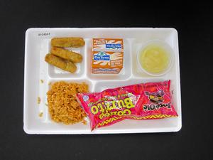 Primary view of object titled 'Student Lunch Tray: 01_20110413_01C4247'.
