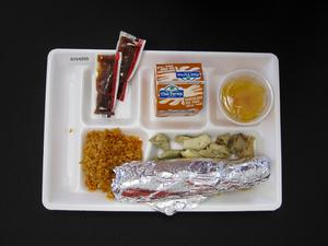Primary view of object titled 'Student Lunch Tray: 01_20110413_01C4255'.