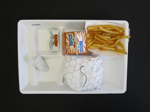 Primary view of object titled 'Student Lunch Tray: 01_20110415_01A5933'.