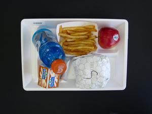 Primary view of object titled 'Student Lunch Tray: 01_20110415_01A5939'.