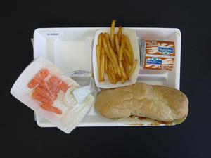 Primary view of object titled 'Student Lunch Tray: 01_20110415_01A5941'.