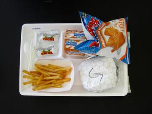 Primary view of object titled 'Student Lunch Tray: 01_20110415_01A5942'.