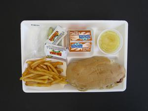 Primary view of object titled 'Student Lunch Tray: 01_20110415_01A6151'.