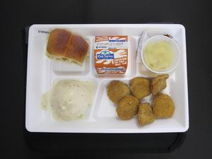 Primary view of object titled 'Student Lunch Tray: 01_20110415_01B5809'.