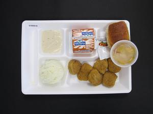 Primary view of object titled 'Student Lunch Tray: 01_20110415_01B5818'.