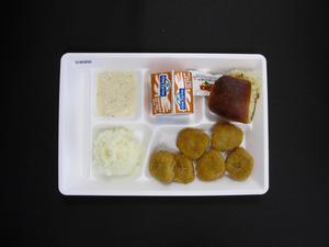 Primary view of object titled 'Student Lunch Tray: 01_20110415_01B5850'.