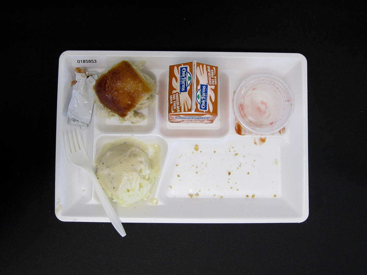 Student Lunch Tray: 01_20110415_01B5853                                                                                                      [Sequence #]: 2 of 2