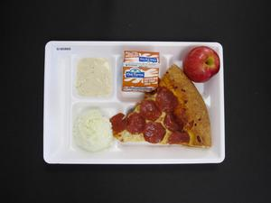 Primary view of object titled 'Student Lunch Tray: 01_20110415_01B5860'.