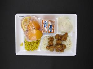 Primary view of object titled 'Student Lunch Tray: 01_20110415_01B5862'.