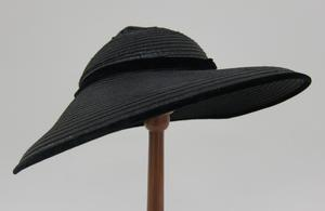 Picture Hat