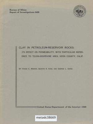 Primary view of object titled 'Clay in Petroleum-Reservoir Rocks: Its effect on Permeability, with Particular Reference to Tejon-Grapevine Area, Kern County, California'.