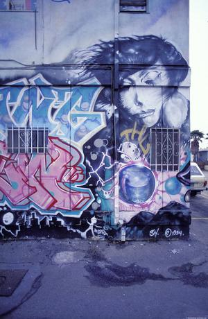 [Graffiti, Venice Beach, California]
