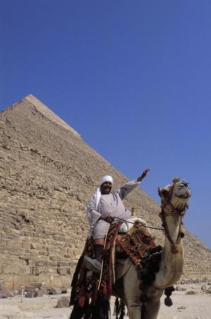 Camels and Tourists at the Pyramids of Giza (Gizeh)