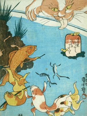 Primary view of A Set of Goldfish