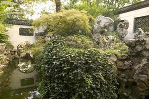Primary view of Yu Garden (Yuyuan): Garden View