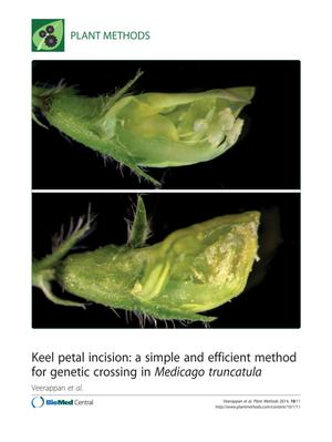 Primary view of object titled 'Keel petal incision: a simple and efficient method for genetic crossing in Medicago truncatula'.