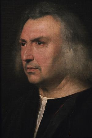 Primary view of object titled 'Portrait of Dr. Gian Giacomo Bartolotti da Parma'.
