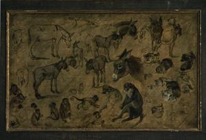 Primary view of object titled 'Studies: Donkeys, Cats, Monkeys'.