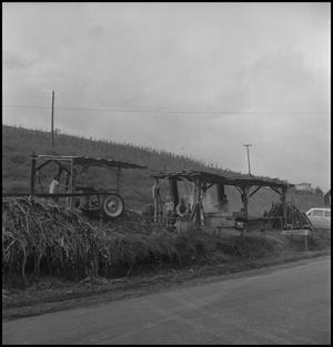 Primary view of object titled '[Roadside stir-off]'.