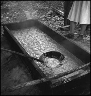 Primary view of object titled '[Boiling vat of sorghum juice]'.
