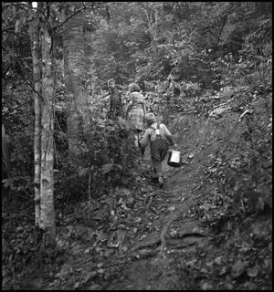 Primary view of object titled '[Children walking along path(1)]'.