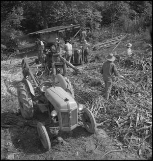 Primary view of object titled '[Tractor driven press at stir-off]'.