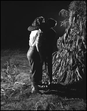 Primary view of object titled '[Kissing behind the stalks]'.