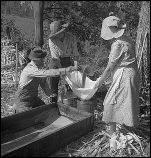 Primary view of object titled '[Two women and a man straining sorghum molasses]'.
