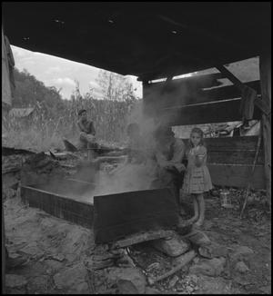 Primary view of object titled '[Family tending to sorghum molasses(1)]'.