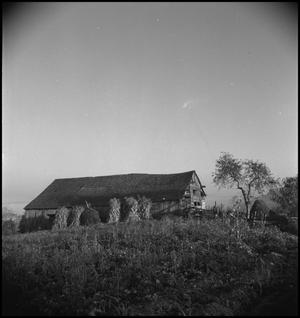 Primary view of object titled '[Farmhouse]'.