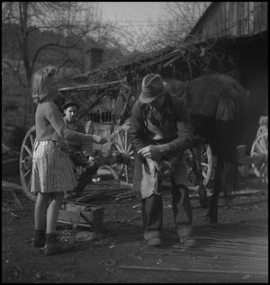 Primary view of object titled '[Shoeing a horse]'.