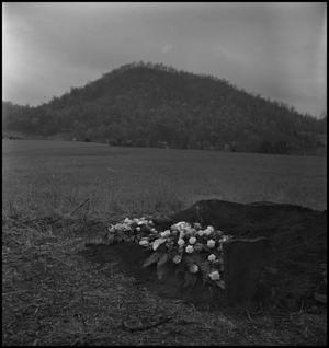 Primary view of object titled '[Mountain Funeral: Flowers on Fresh Dirt]'.