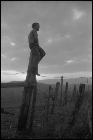 Primary view of object titled '[Jimmy Powell Sitting on a Fence Post]'.