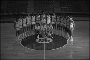 Primary view of object titled '[1976-77 men's basketball team group shot]'.